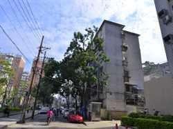 市政府宿舍