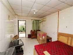 莲福广场1居 单身公寓 大空间 使用面积大 租金合理