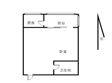 金领广场+1房+湖明小学