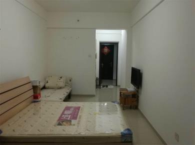 海沧周边圣,地亚哥小区,精装单身公寓高楼采光好