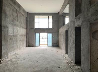 会展 大洲国际龙郡 复式楼中楼 5.2米挑高 买一层用两层