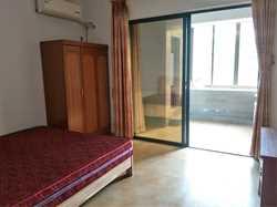 同城四季 电梯房单身公寓 大阳台 采光明亮 租金合理